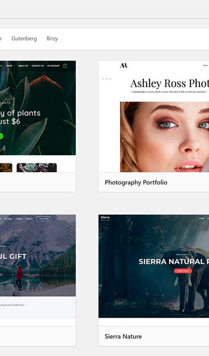 Astra Hjemmeside i wordpress
